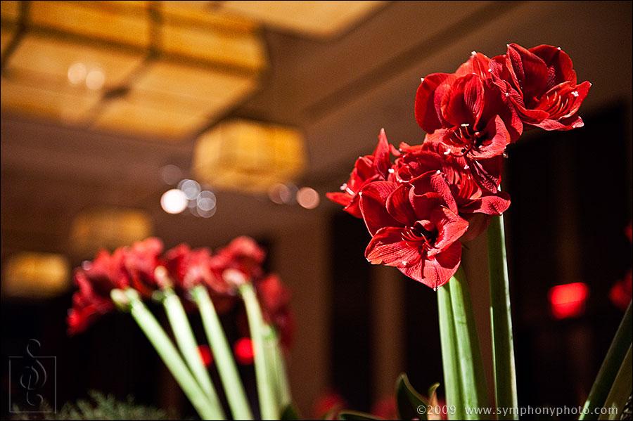 wedding florist, Winston Flowers, Boston, MA